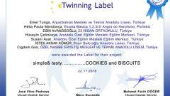 """""""Simple& tasty COOKIES and BISCUITS"""" (Çiğdem GÖK)"""